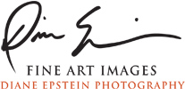 Diane Epstein, Fine Art Photography & Biophilia Art